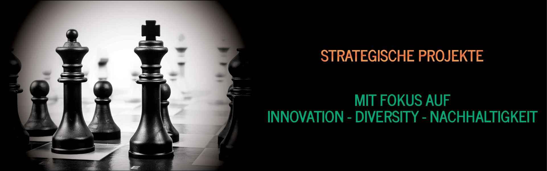 Strategische Projekte mit Fokus auf Innovation Diversity Nachhaltigkeit Startups