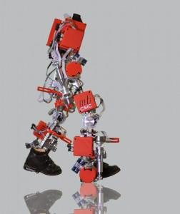 Bild: National Research Council (CSIC) / Technologie-Bereich Marsi Bionics